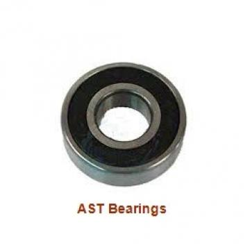AST ASTT90 2825 plain bearings